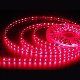 Tira Flexible LED 12V IP20
